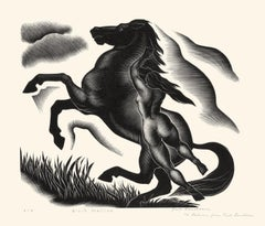 Black Stallion — unique first trial proof