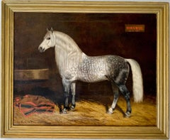 Large 19th century French Portrait of a Lippizan Horse - Antique Animal Genre
