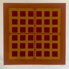 Abstract Geometric 1970s Kinetic Silkscreen Screen Print Manner Vasarely Op Art