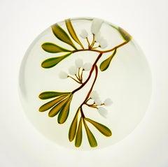 Paul Stankard Glass Paperweight Fine Art Experimental Unique piece