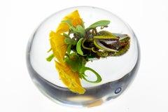 Paul Stankard Paperweight Seeds, yellow Lillys w/Wildflowers & Bursting seed pod