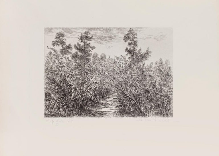 Landscape - Original Etching by Paulette Humbert - 20th Century For Sale 1
