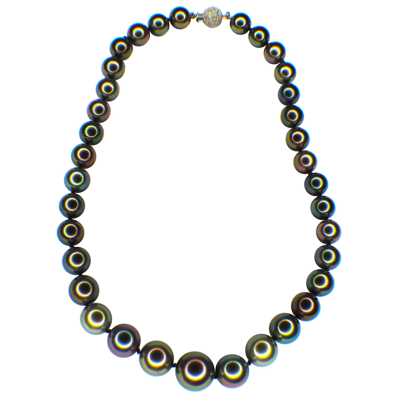 GEMOLITHOS Peacock Color, Tahiti Culture Pearl Necklace, Modern
