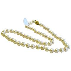Pearl Necklace 14 Karat Gold Brooch