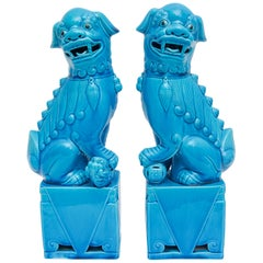 Peking Blue Foo Dogs