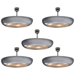 Pendant Ceiling Light in Chrome