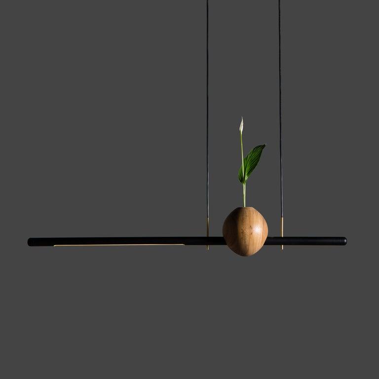 Other Pendant Lamp Ninho 01 on Tropical Brazilian Hardwood For Sale