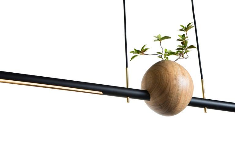 Hand-Crafted Pendant Lamp Ninho 01 on Tropical Brazilian Hardwood For Sale