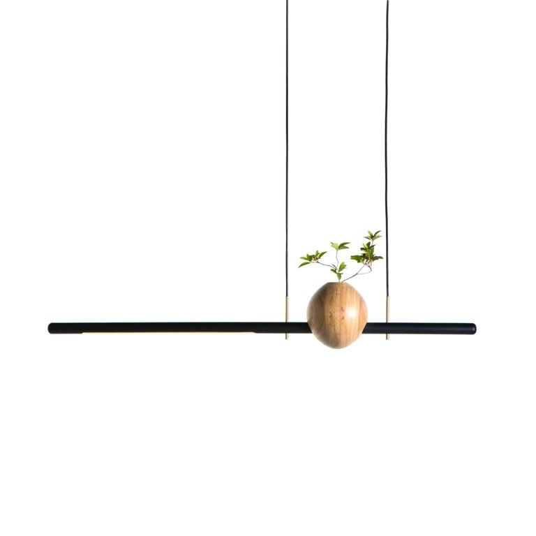Pendant Lamp Ninho 01 on Tropical Brazilian Hardwood For Sale
