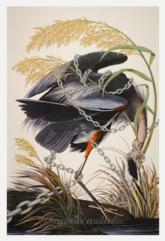 """Phragmites Australius, 2016"" Print of Audubon Stork over-painted and printed"