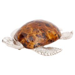 Penshell and Bronze Sea Turtle