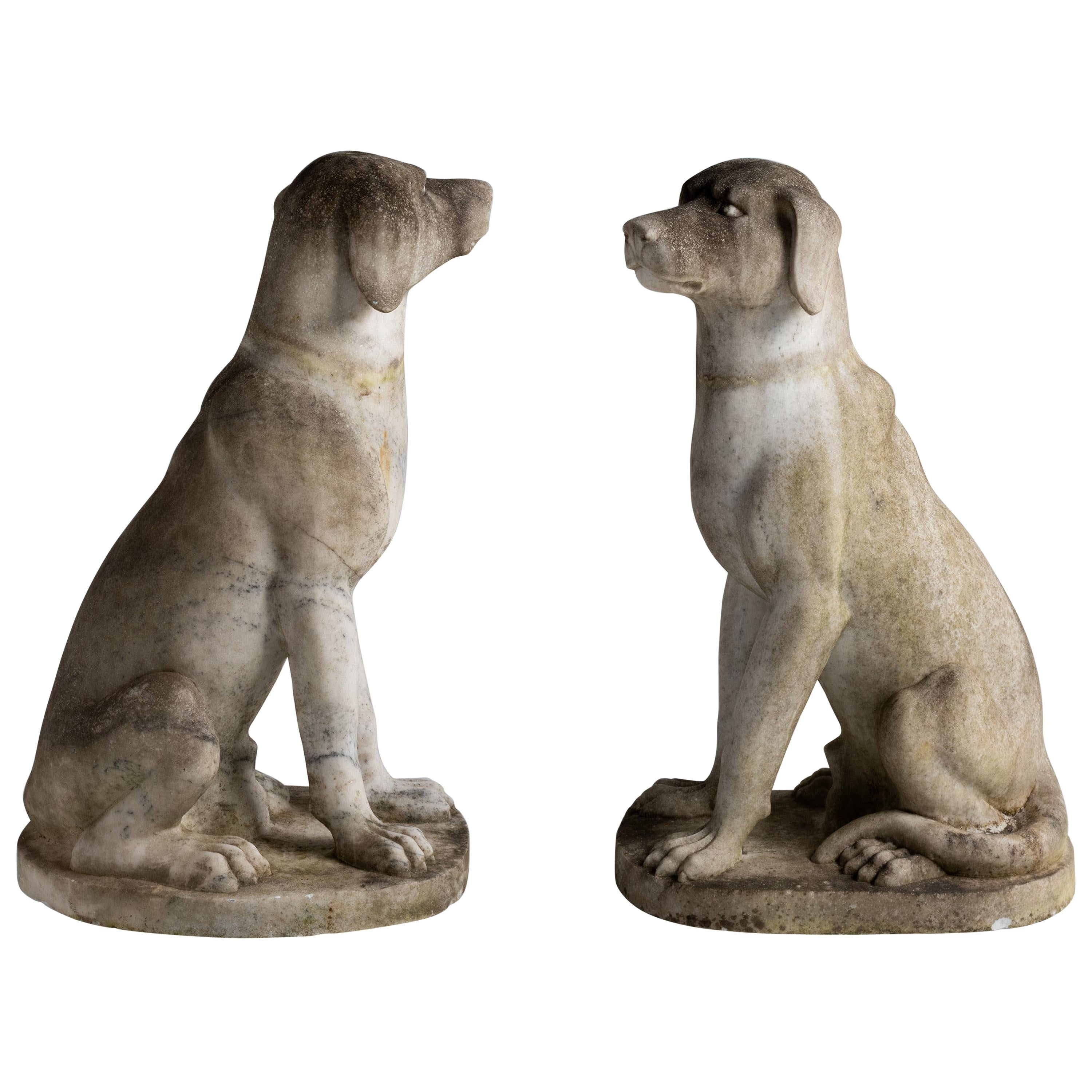 Pensive Dog Statues in Marble