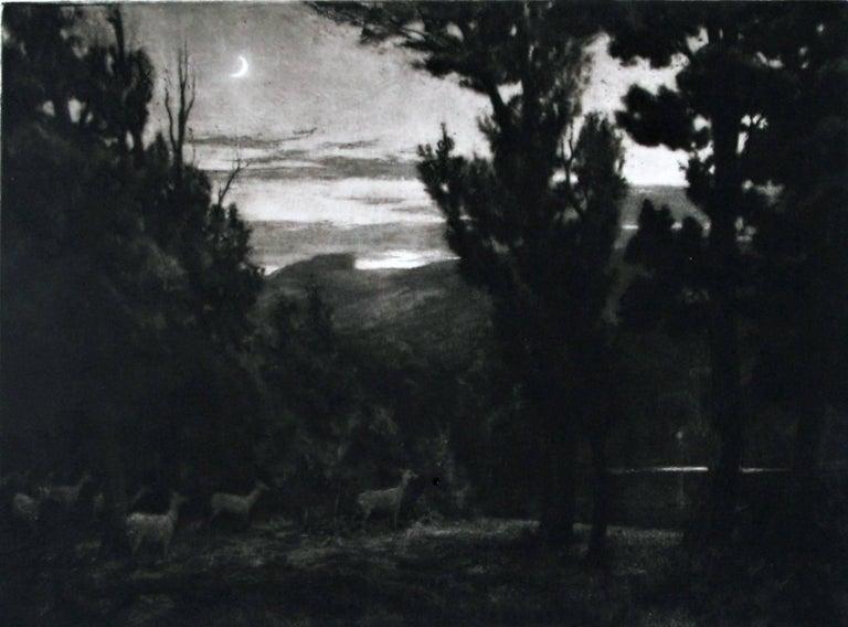 Percival Gaskell, R.E. Animal Print - The Lake.
