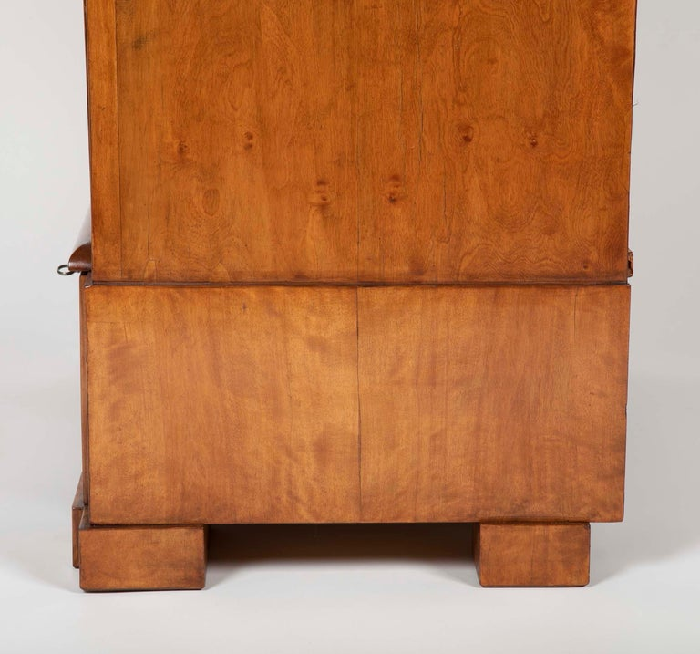 Period Biedermeier Birch Chest with Modern Appeal For Sale 7