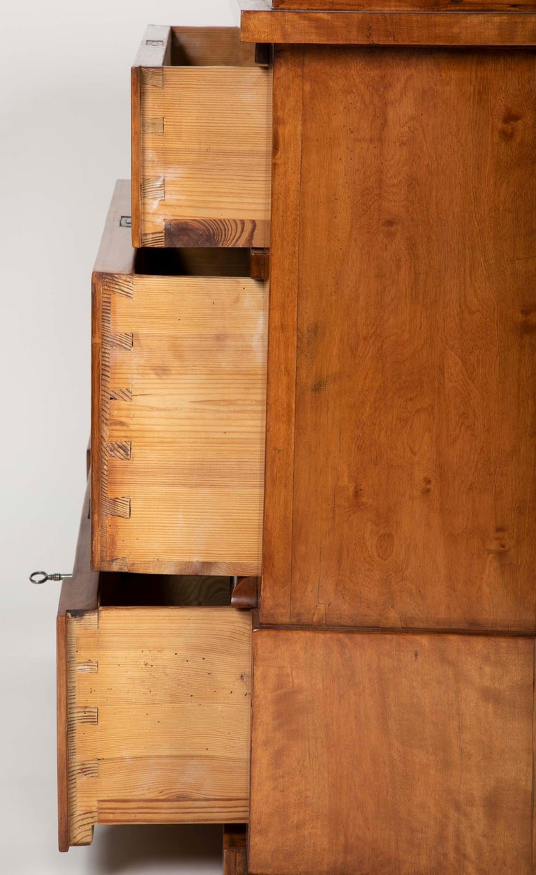 Period Biedermeier Birch Chest with Modern Appeal For Sale 9