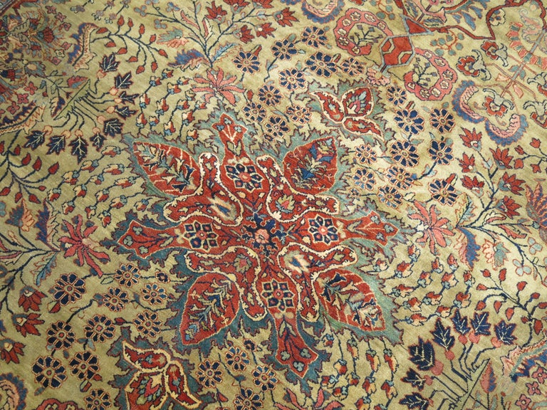 Persian Sarouk Fereghan Rug For Sale 3