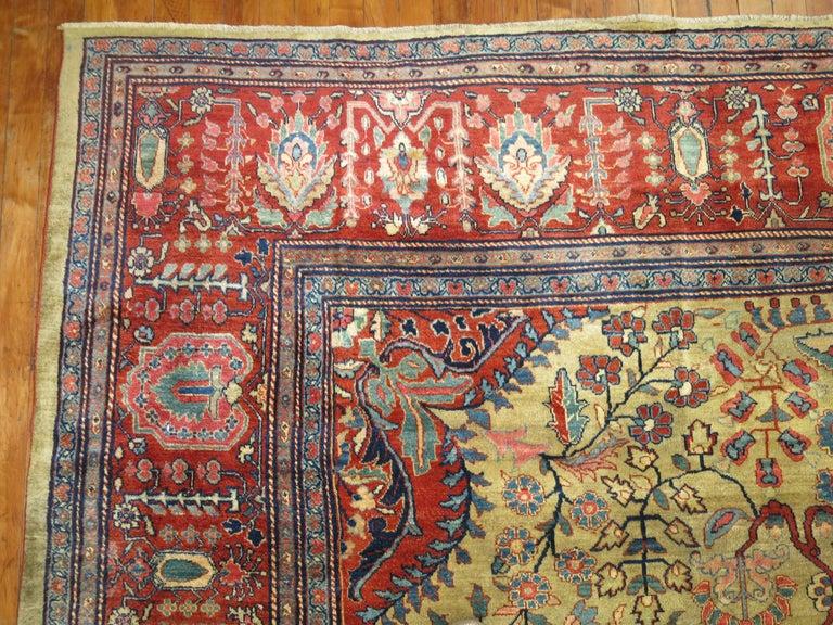 Persian Sarouk Fereghan Rug For Sale 2