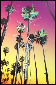 Santa Barbara Over Palms