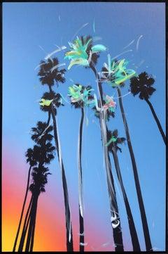 Santa Barbara Sky High Palms