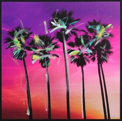 Venice California Pink Palms