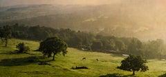 The Ridge, Cheshire, England, UK, 2013