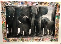 Eles at Buffalo Springs - Animal, Landscape Photography, Peter Beard