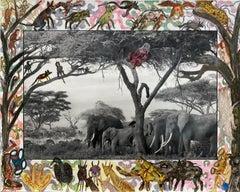 Gardeners of Eden - Contemporary, Animal, Landscape Photography, Peter Beard