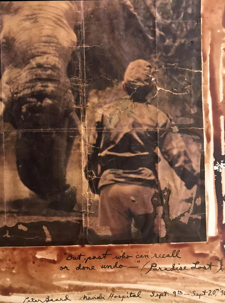 Paradise Lost, Photography, Double Sided, Black and White, Color, Signed - Brown Black and White Photograph by Peter Beard