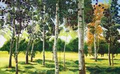 Wandsworth Common Summer Birches original landscape painting