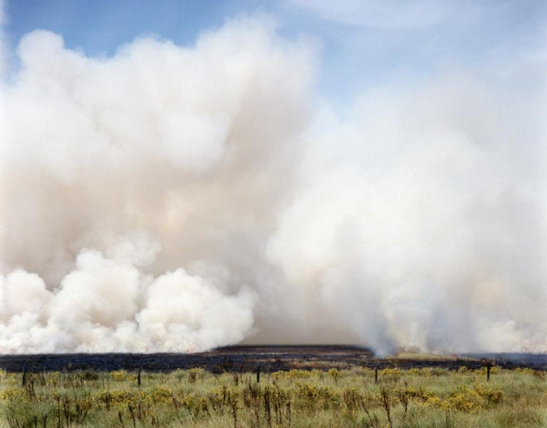 Peter Brown Landscape Photograph - Controlled Burn, High Island, Texas