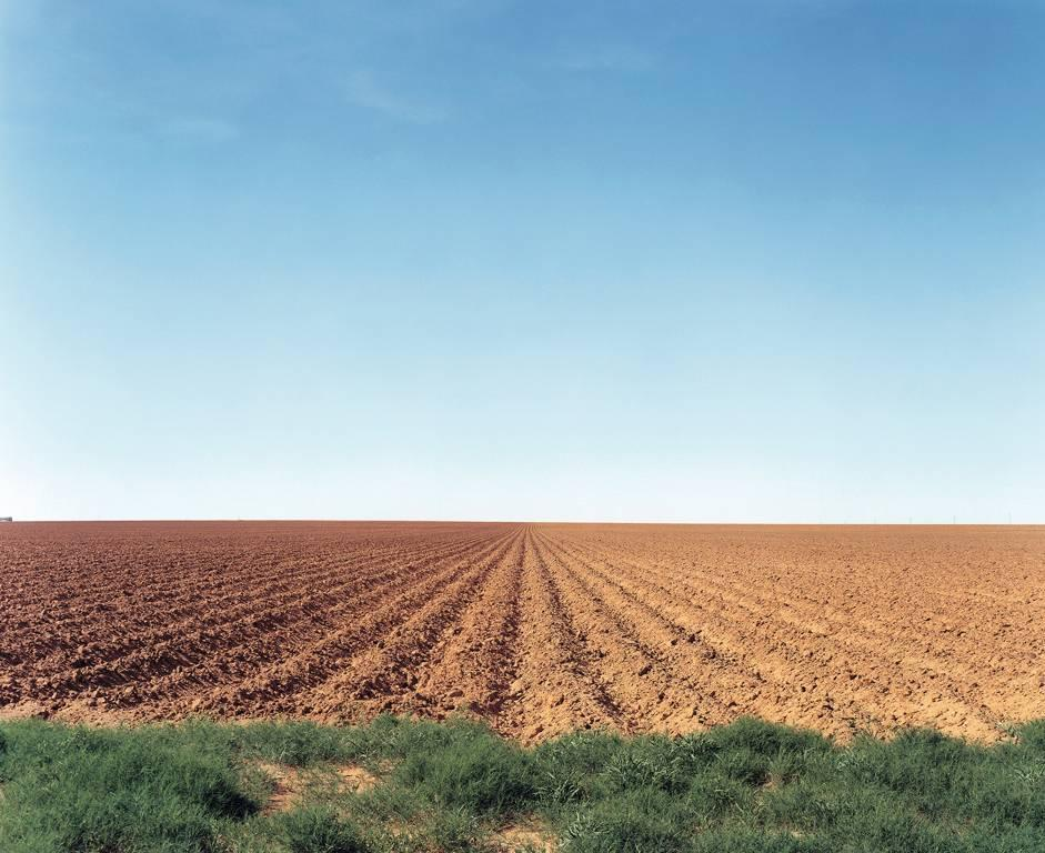 North Texas: Plowed field, Patricia