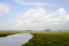 South Texas: Cash Creek and coastal prairie, Matagorda County