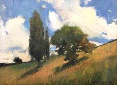 Hillside (big sky, lush trees, golden grass)