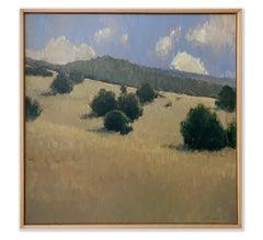 Summer Hillside (lush pinions, golden grasses, Colorado sunshine)