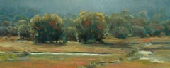 The Animas Valley (abstract, river, fence, lush trees)