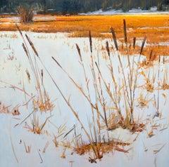 Winter Grasses (landscape, winter, snow)