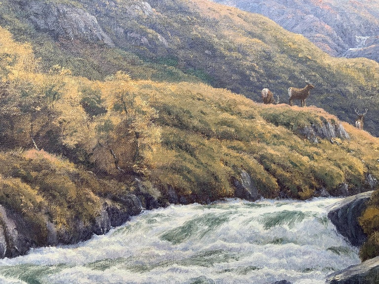 Wild Deer in Scottish Highland Forest with Mountain River by British Artist For Sale 11