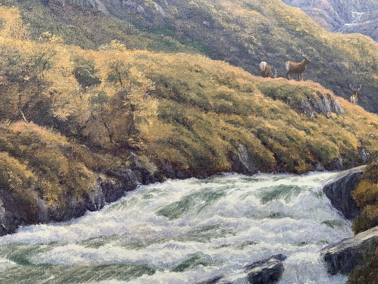 Wild Deer in Scottish Highland Forest with Mountain River by British Artist For Sale 12