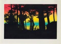 Peter Doig, Big Sur, etching, signed, 2000
