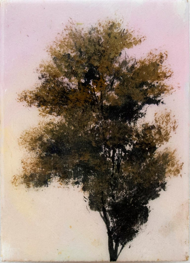 A single leafy tree top on a slender trunk and set against a creamy lemon yellow sky on a small panel is paired with another unique painting of a slightly fuller tree on a light pink ground. These intimate and jewel like paintings that are finished