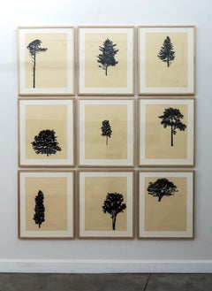 Der Wald - framed portfolio of nine wood block prints
