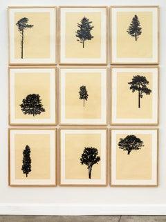 Der Wald 10/12 - framed portfolio of nine woodblock prints