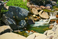 Rapids on the Carson / oil on canvas - river painting