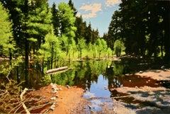 Swamped Aspens / oil painting 40 X 60in