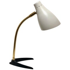 Petite Iron and Brass Multidirectional Desk Lamp