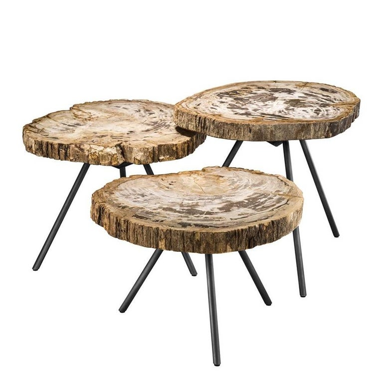 Petrified Light Wood Slices Set Of Three Coffee Table For