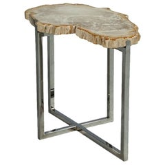 Petrified Wood Accent Table
