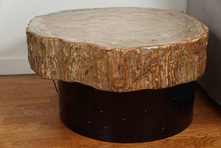 Petrified Wood Cocktail Table in the Style of Ado Chale For Sale 1