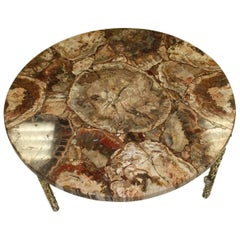 Petrified Wood Coffee Table Gilt Bronze Base