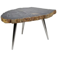 Petrified Wood Coffee Table or Side Table with Stainless Steel Feet